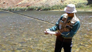 Buy a hunting or fishing license online